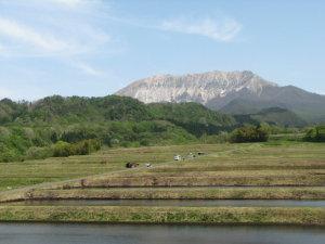 植田と大山