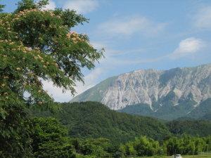 大山と合歓の花