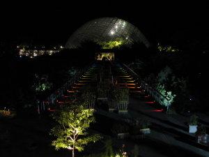夜の花回廊