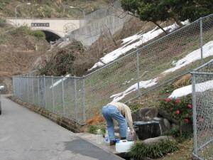 淀江トンネルの湧水