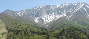 若葉の大山
