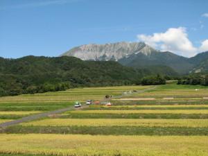 大山の棚田