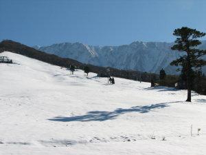 大山寺積雪