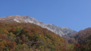 大山の紅葉Ⅲ