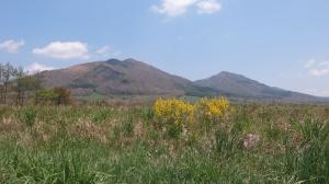春の蒜山高原