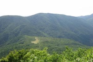 新・花の百名山 比婆山