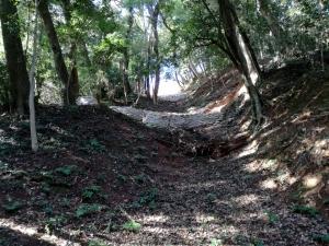 米子城の竪堀