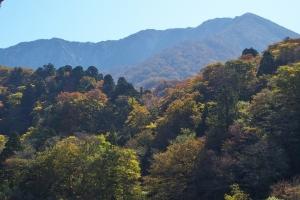 大山の紅葉Ⅱ